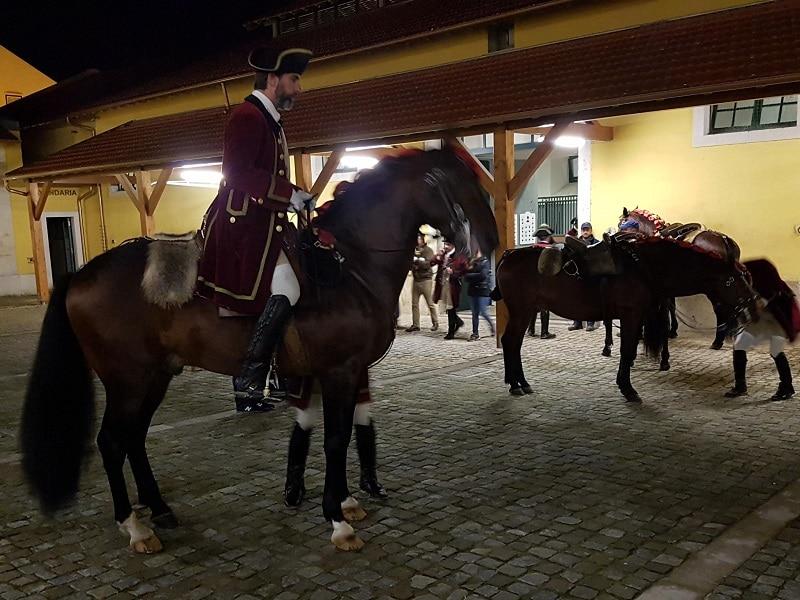 Arte Equestre